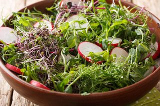 Waldorf Salad with A&S Microgreens, radishes, ndied walnuts, apples, and celery root